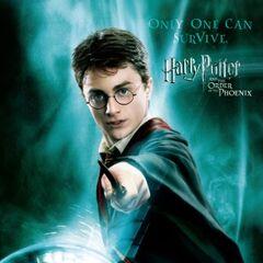 Sólo uno podrá sobrevivir (Harry y Voldemort)