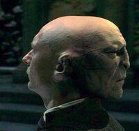 P1 VoldemortQuirell