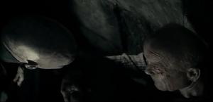 Encuentro entre Voldemort y Grindelwald