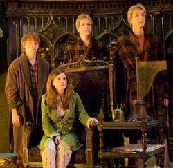 Fred, George , Ron y Ginny