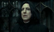 Severus Snape slider enero