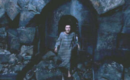 Bellatrix escapes Azkaban