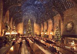 P2 Navidad Hogwarts 1992