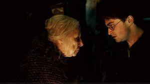 P7 Harry y Bathilda en el valle de Godric en 1997