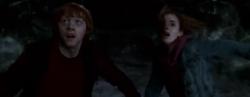 Hermione y Ron escapan de la inundación en la Cámara Secreta