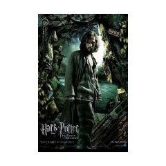Ha llegado la hora (Sirius y Pettigrew)