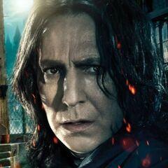 Poster de Severus Snape
