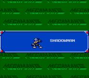 ShadowPresentaWW