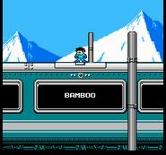 Bamboo-R4