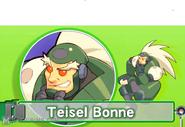 Teisel3