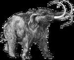 Mammouthwikipedia