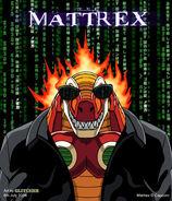 Mattrexnm7