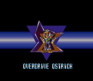 OstrichPresentacion
