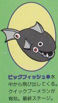 BigFish-RCC
