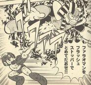 FlashStopper-Ikehara4
