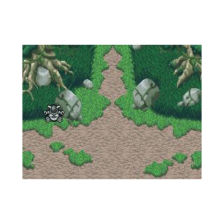 Entrada al Bosque Misterio.