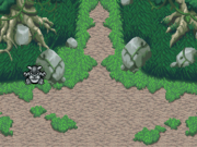 Bosque Misterio Entrada