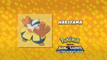 EP994 Quién es ese Pokémon
