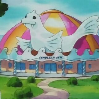 El gimnasio de Ciudad Celeste entrena Pokémon de <a href=
