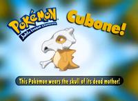 EP163 Pokémon