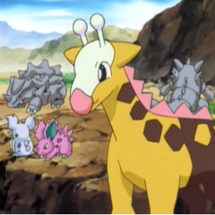 EP383 Pokemon salvajes (2).png