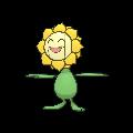 Sunflora XY