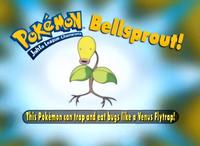 EP208 Pokémon