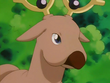 EP127 Stantler (6)
