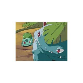 Bulbasaur junto a <a href=