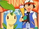 Competencia/Competición de Pokémon extremo