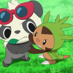 EP854 Pancham y Chespin.png