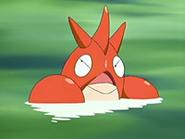 EP429 Corphish nadando