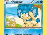 Panpour (XY TCG)