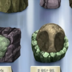 Multitud de fósiles en el <a href=