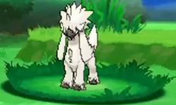 Pokémon desconocido (04.09.13) en combate