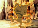 EP489 Meowth capturado