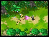 Pokémon Nappers atrapando a Pokémon de la Isla Dolzor