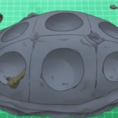Un fósil tapa en el <a href=