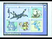 EP271 Pokémon de Gary en su página web