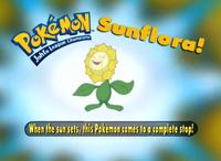 EP206 Pokémon