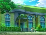 Gimnasio Pokémon de Ciudad Novarte