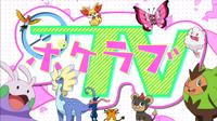 EP898 Canal Amor por los Pokémon