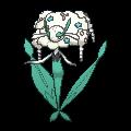 Florges blanca XY