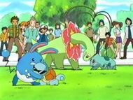 EP270 Azumarill vs Squirtle