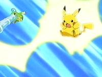 EP275 Politoed y Pikachu atacando