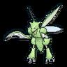 Scyther XY hembra