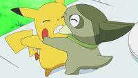 EP668 Axew peleando con pikachu