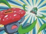 EP180 Bulbasaur vs Vileplume