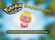 EP214 Pokémon