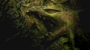 P18 Rayquaza en la presentación de la película